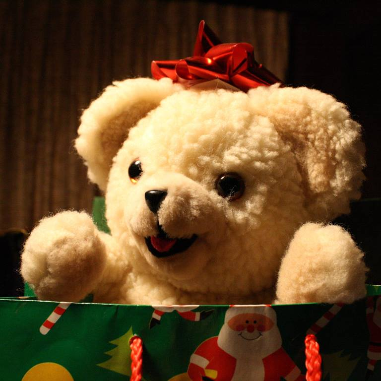 Christmas teddy bear. Photo courtesy photos-public-domain.com