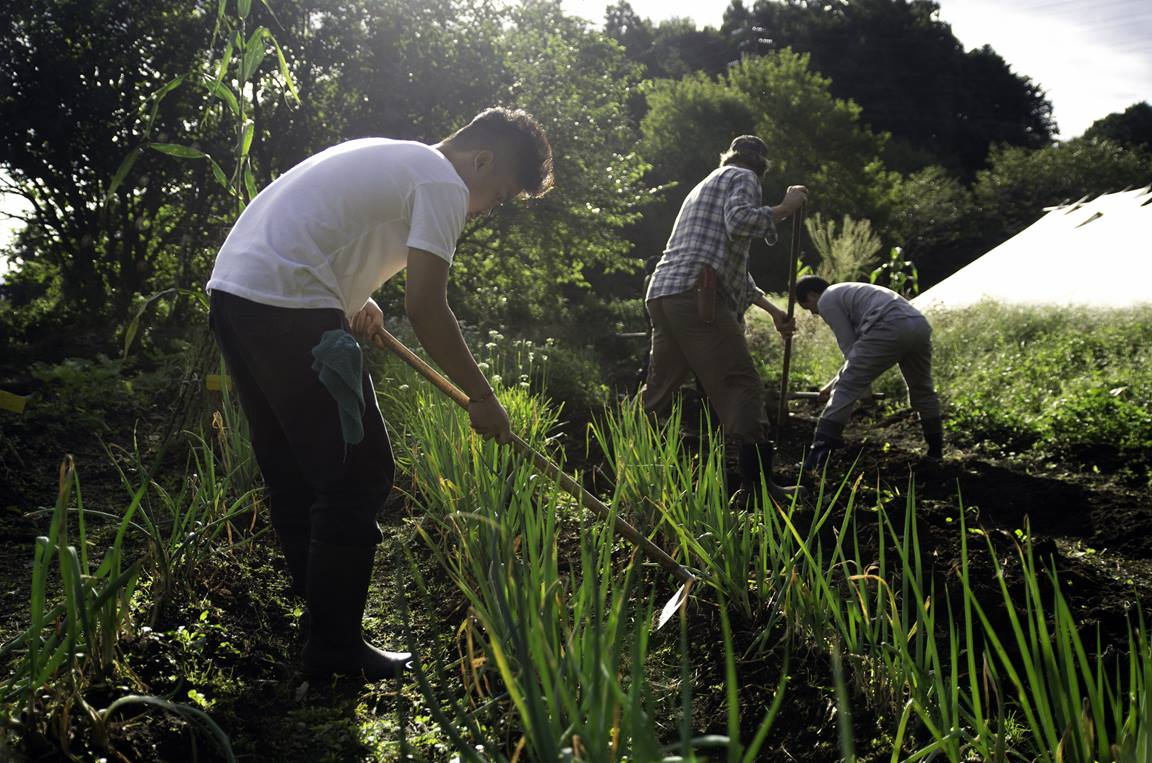 Global Ministries promotes care of the environment through eco-friendly advocacy and practices. Projects in Sustainable Agriculture and Development train people in the necessary skills in local sustainable food production to promote healthy diets and to reverse the ills of undernutrition. Image courtesy of Global Ministries.