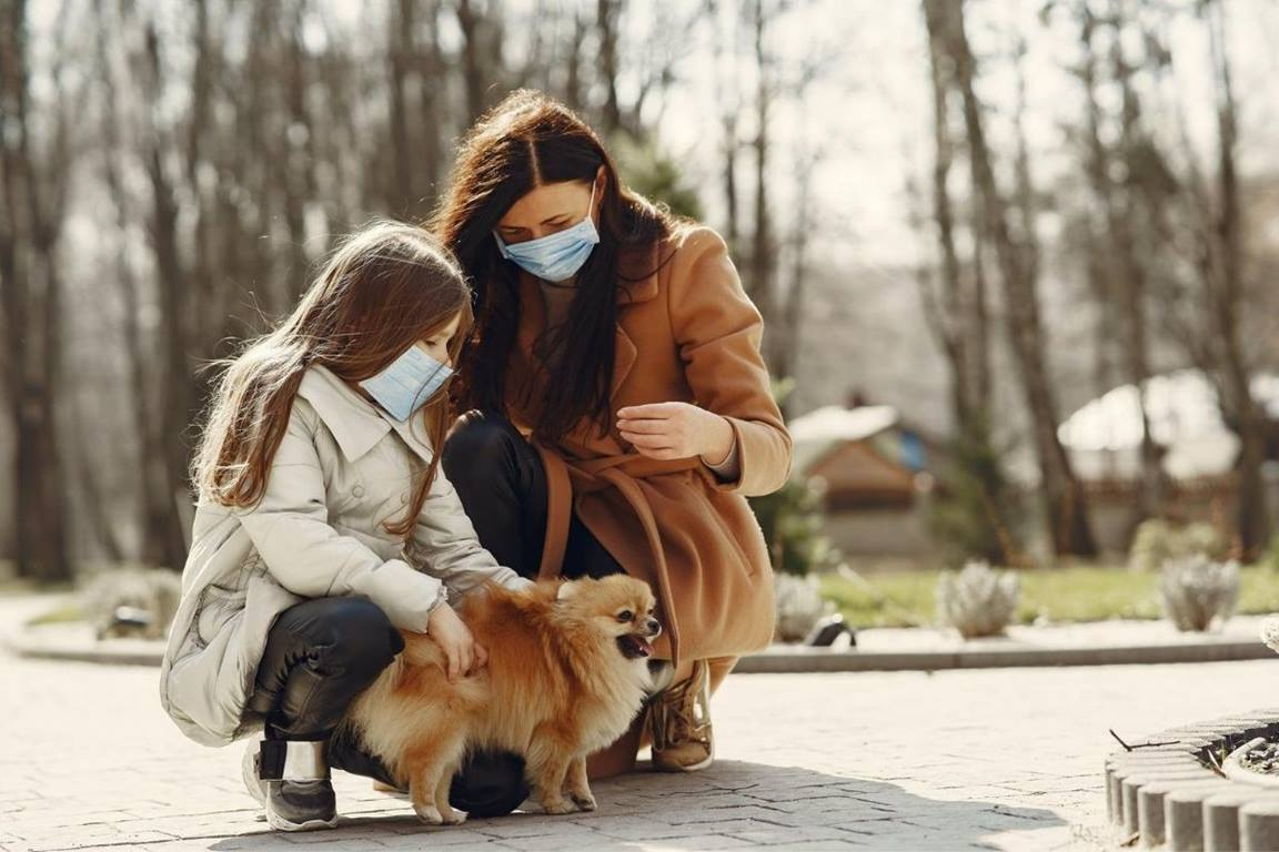 Many people are adding a furry friend to their families amidst the pandemic. (Photo courtesy of Gustavo Fring via Pexels.com.)