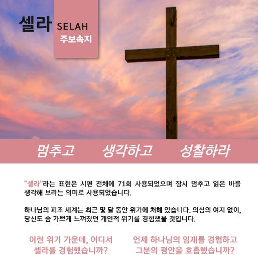 2020 셀라 한국어 주보 속지 십자가