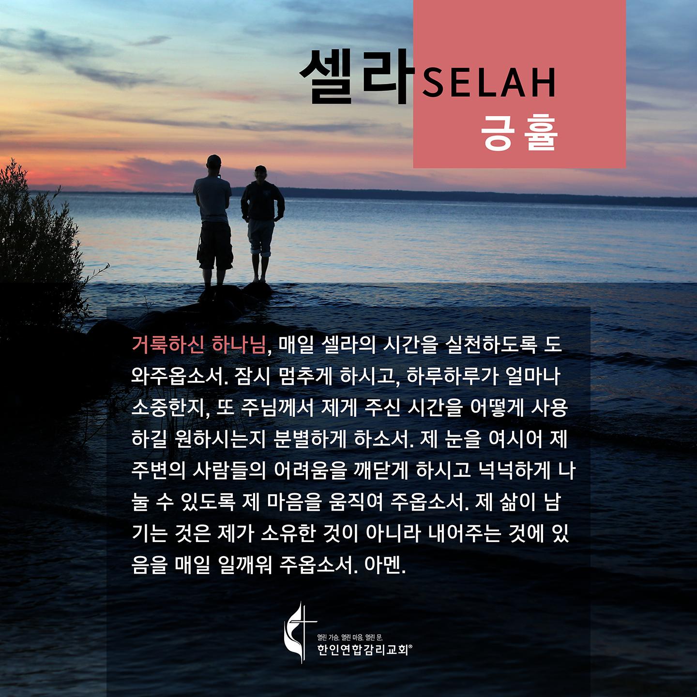 2020 셀라 한국어 플레쉬 카드 긍휼 1440x1440