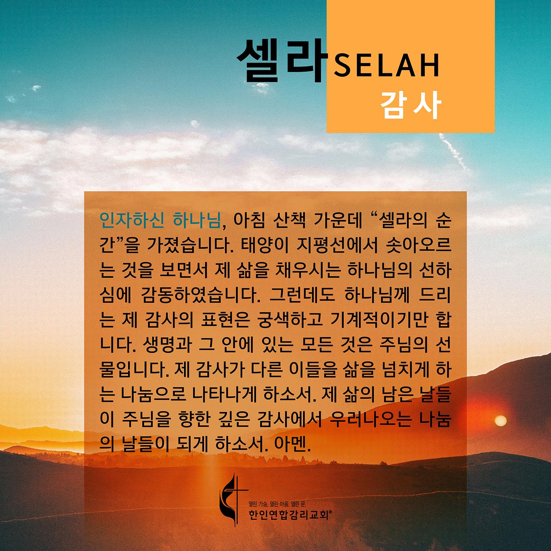 2020 셀라 한국어 플레쉬 카드 감사 1440x1440