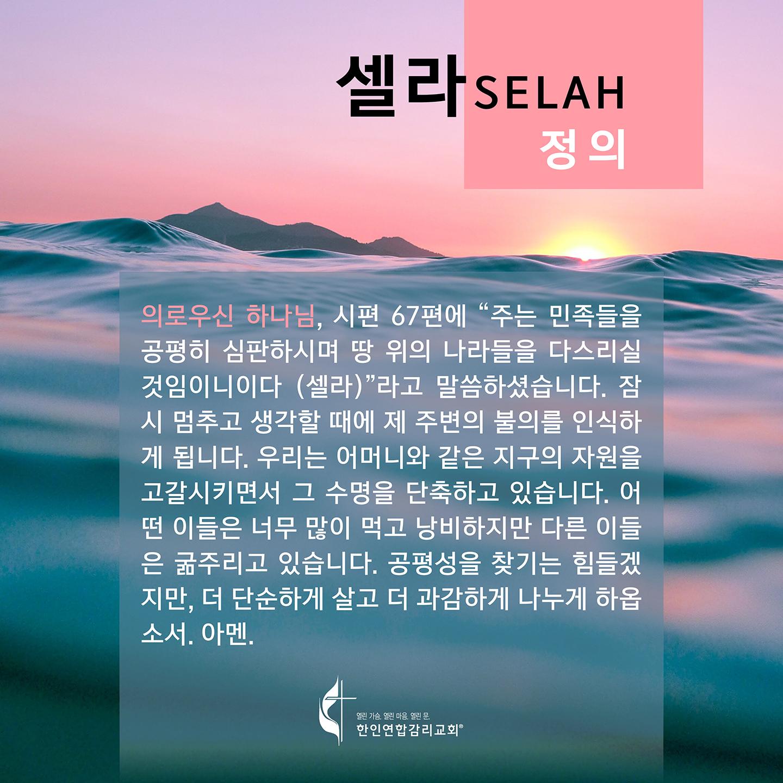 2020 셀라 한국어 플레쉬 카드 정의 1440x1440