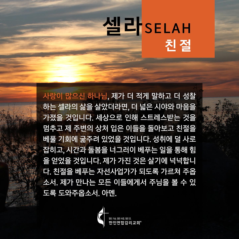 2020 셀라 한국어 플레쉬 카드 친절 1440x1440