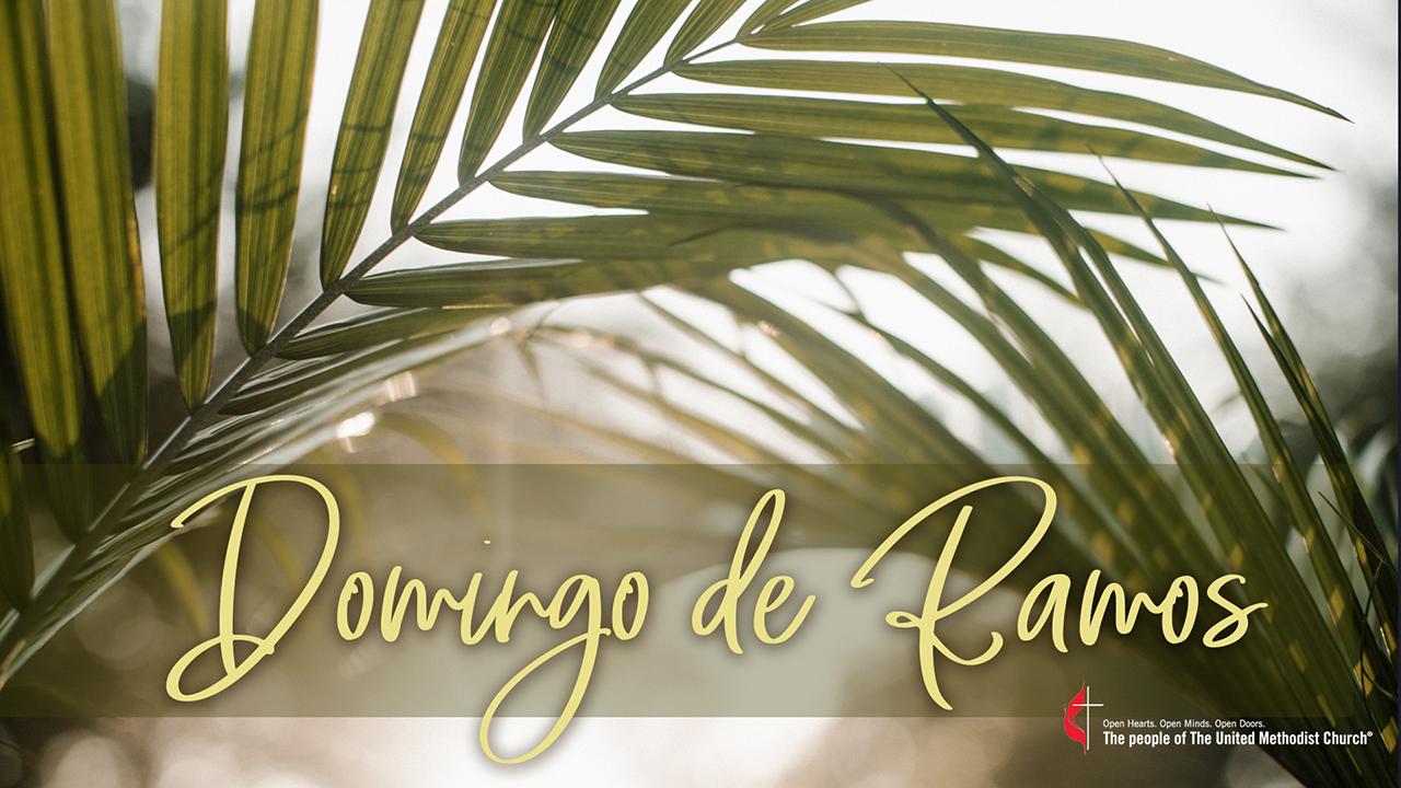 El domingo de ramos recordamos la entrada triunfal de Jesús a Jerusalén, aclamado por la multitud, días antes de su pasión, muerte y resurrección