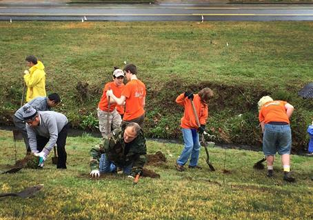 Boy Scouts (orange shirts) are among the 75 volunteers from Hillcrest United Methodist Church, Nashville, Tennessee, and the surrounding community working on a Creation Care project. The group planted 250 native trees on March 14, 2015. Photo by Kathryn Spry