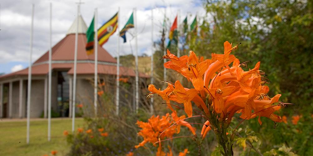Africa University Landscape. Photo caption: UMNews/M. DuBose