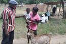 Anoziva  Sisimayi and her son Kudzai Gombakomba receive a goat from the Rev. Austern Chepiri in Mujaji, Zimbabwe. A goat breeding program sponsored by the Western Pennsylvania Conference of The United Methodist Church has helped more than 100 orphans and vulnerable children in Zimbabwe. Photo by Pastor Hillary Mukahanana.