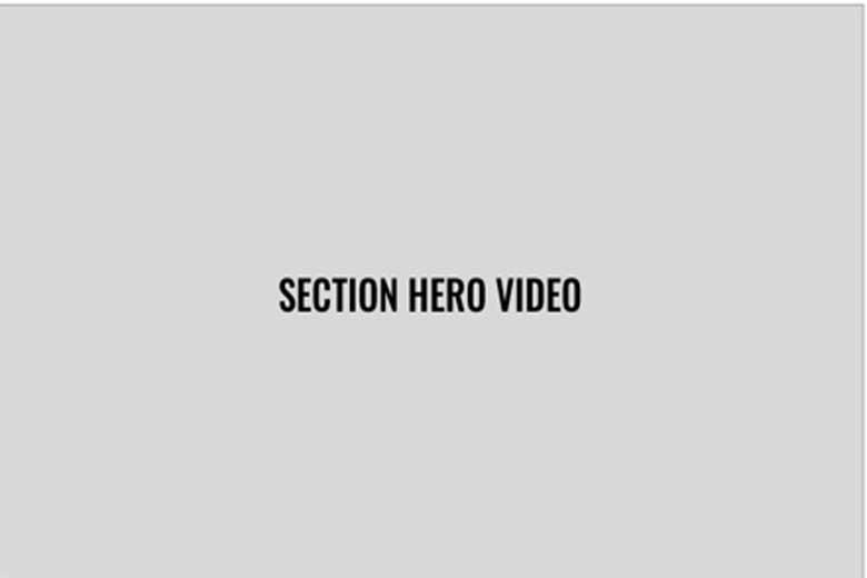 Section Hero Image